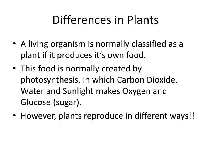 Differences in Plants