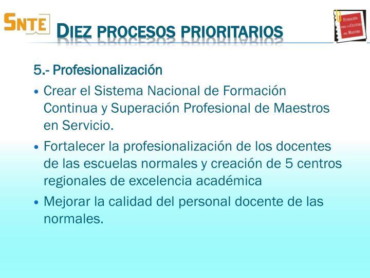 5.- Profesionalización