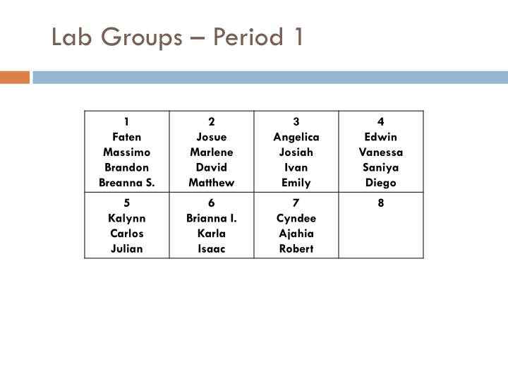 Lab Groups – Period 1