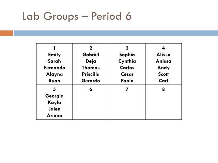 Lab Groups – Period 6