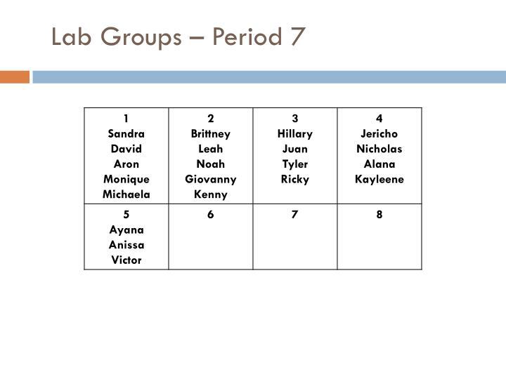 Lab Groups – Period 7