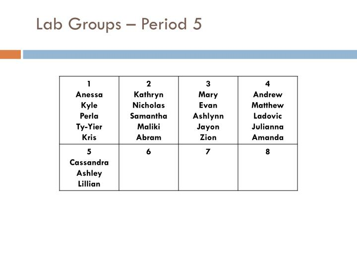Lab Groups – Period 5