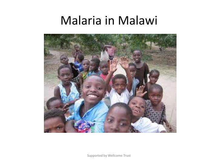 Malaria in Malawi