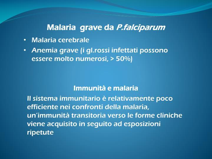 Malaria  grave da