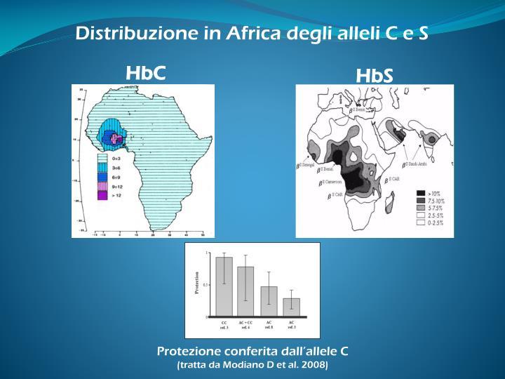 Distribuzione in Africa degli alleli C e S