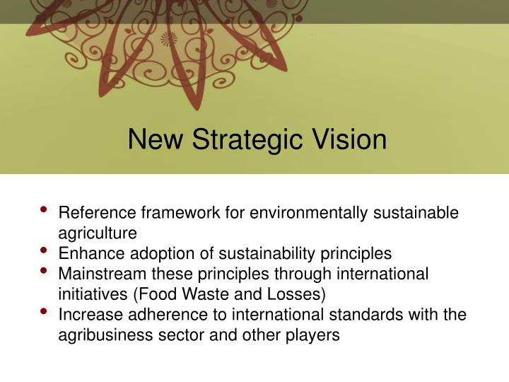 New Strategic Vision