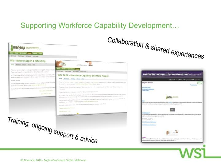 Supporting Workforce Capability Development…