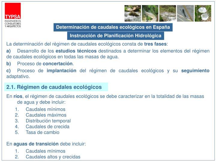 Determinación de caudales ecológicos en España