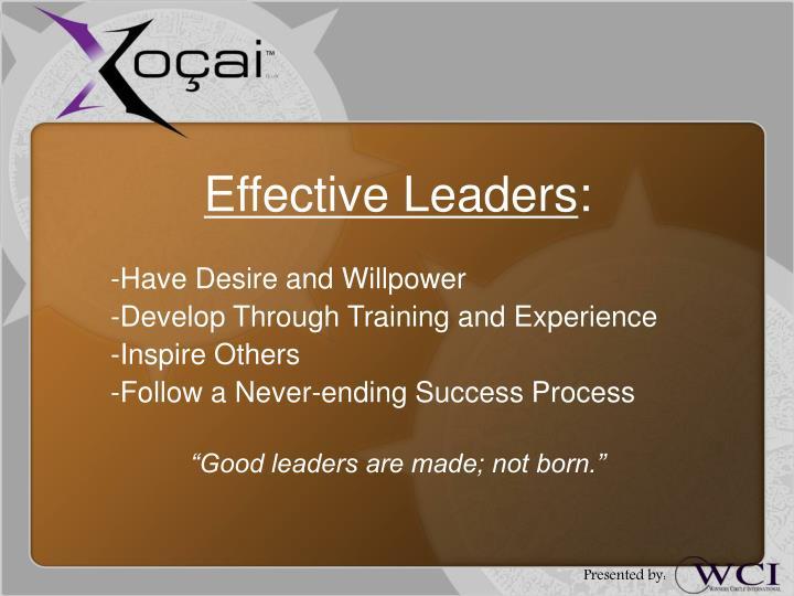 Effective Leaders