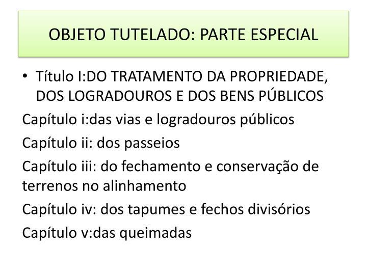 OBJETO TUTELADO: PARTE ESPECIAL