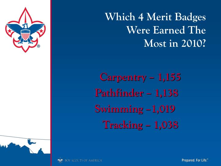 Which 4 Merit Badges