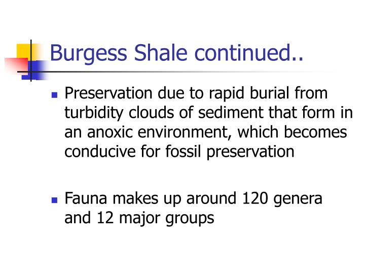 Burgess Shale continued..