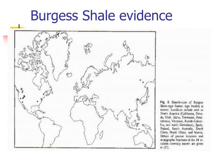 Burgess Shale evidence