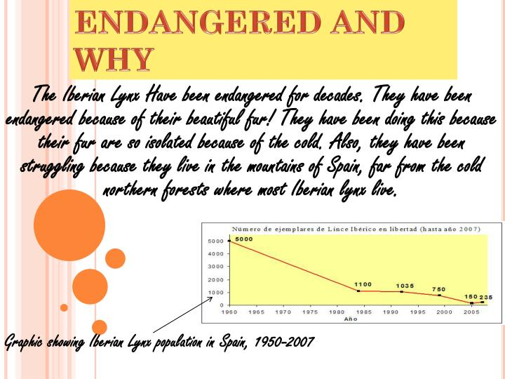 HOW IT HAS BECOME ENDANGERED AND WHY