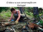 o lobo e a sua conserva o em portugal