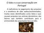 o lobo e a sua conserva o em portugal7