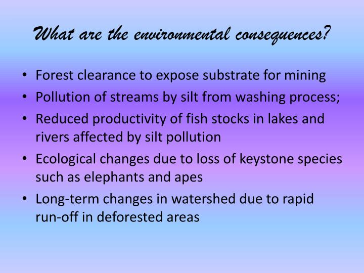 What are the environmental consequences?