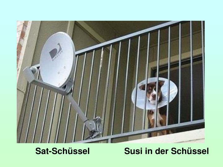 Sat-Schüssel