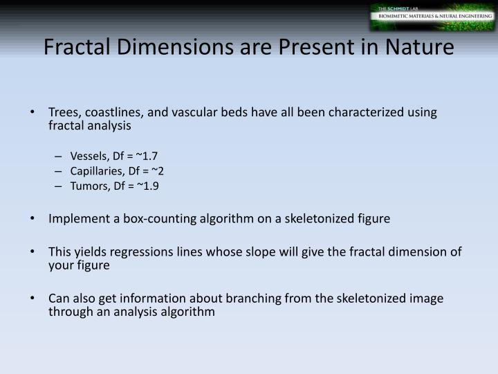 Fractal Dimensions are Present in Nature