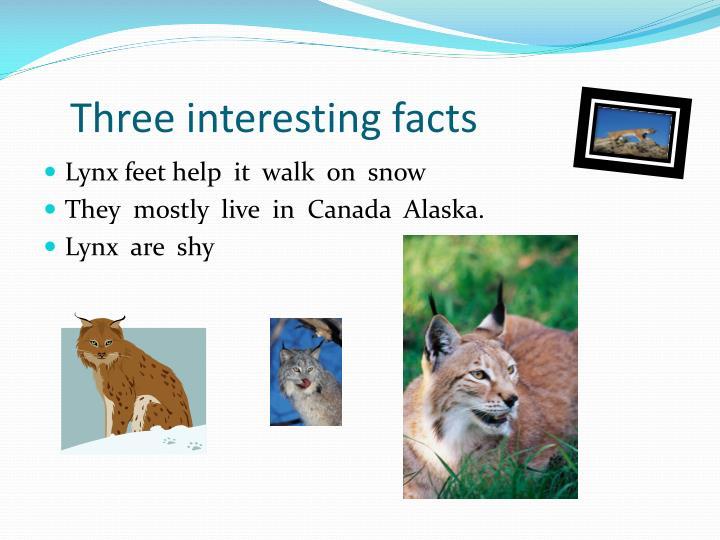 Three interesting facts
