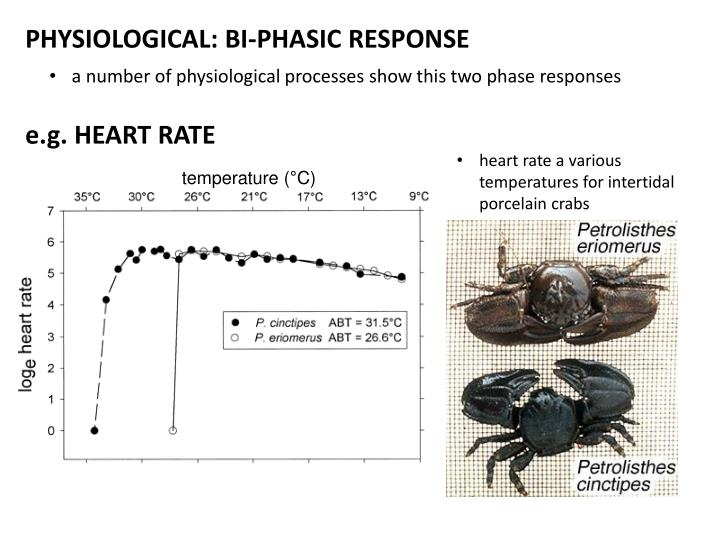 PHYSIOLOGICAL: BI-PHASIC RESPONSE