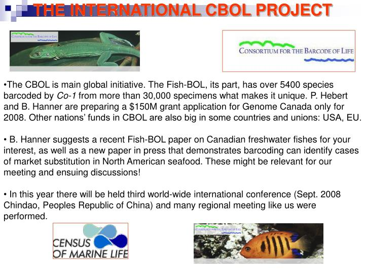 THE INTERNATIONAL CBOL PROJECT