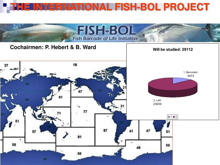 THE INTERNATIONAL FISH-BOL PROJECT