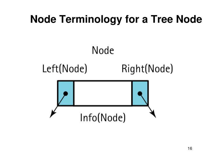 Node Terminology for a Tree Node
