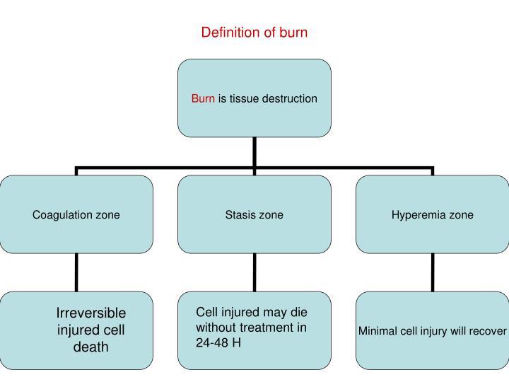 Definition of burn