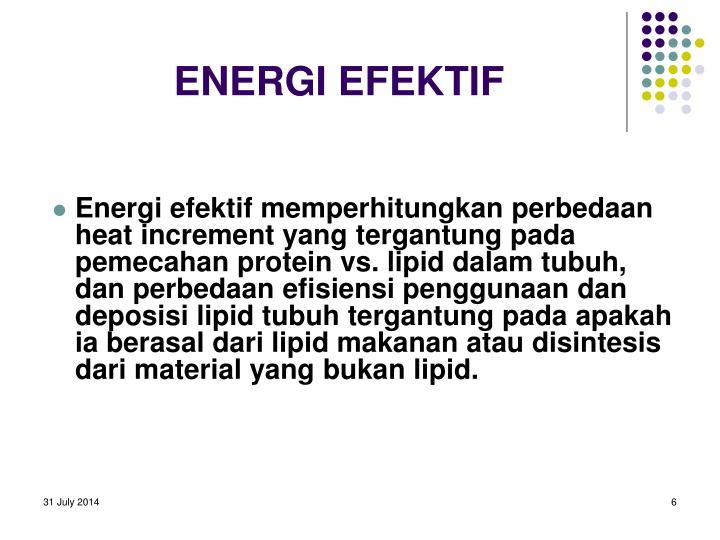 ENERGI EFEKTIF