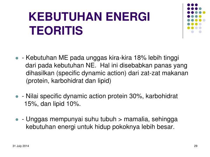 KEBUTUHAN ENERGI TEORITIS
