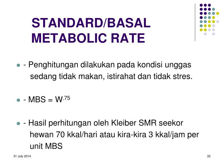 STANDARD/BASAL METABOLIC RATE