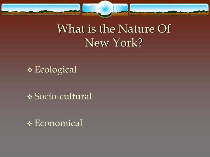 What is the nature of new york