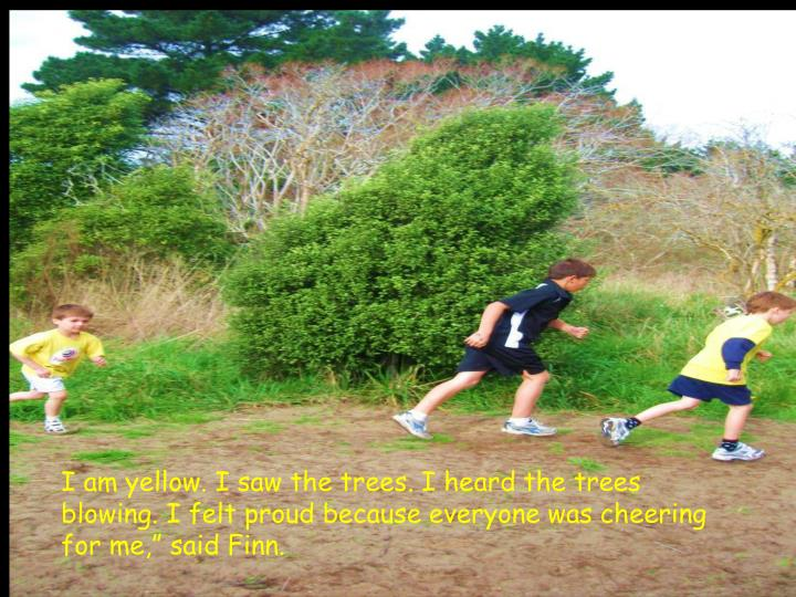I am yellow. I saw the trees. I heard the trees blowing. I felt proud because everyone was cheering ...