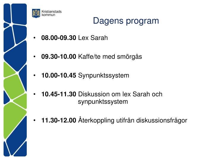 Dagens program