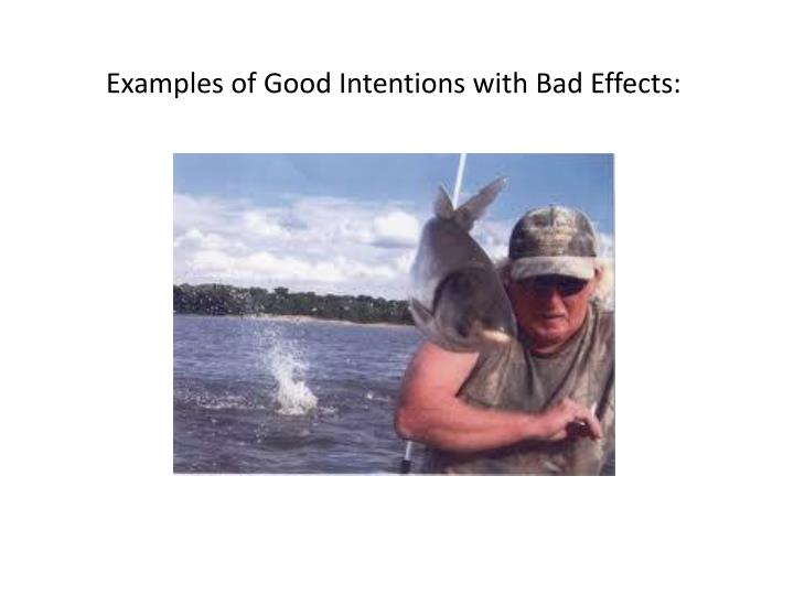 Examples of Good Intentions with Bad Effects: