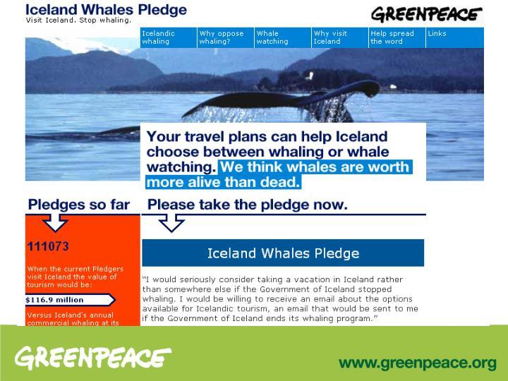Iceland Whales Pledge