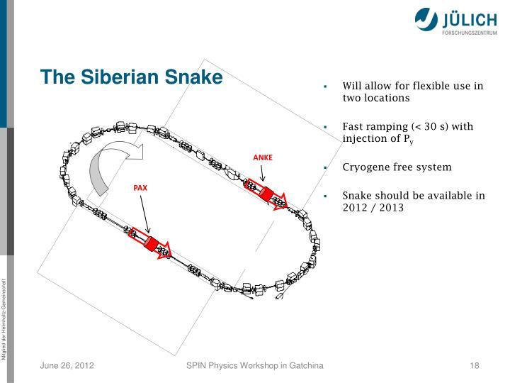 The Siberian Snake