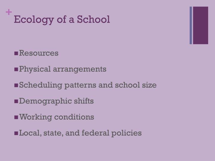 Ecology of a School