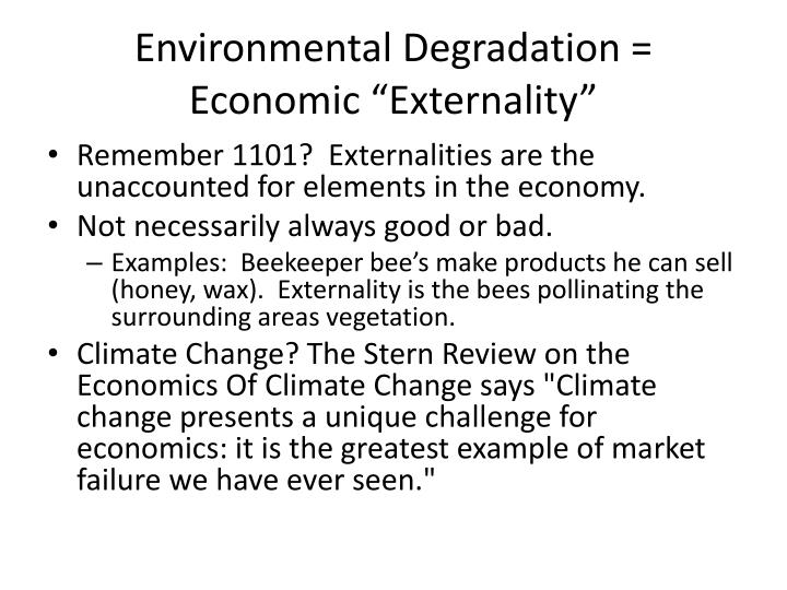 "Environmental Degradation = Economic ""Externality"""