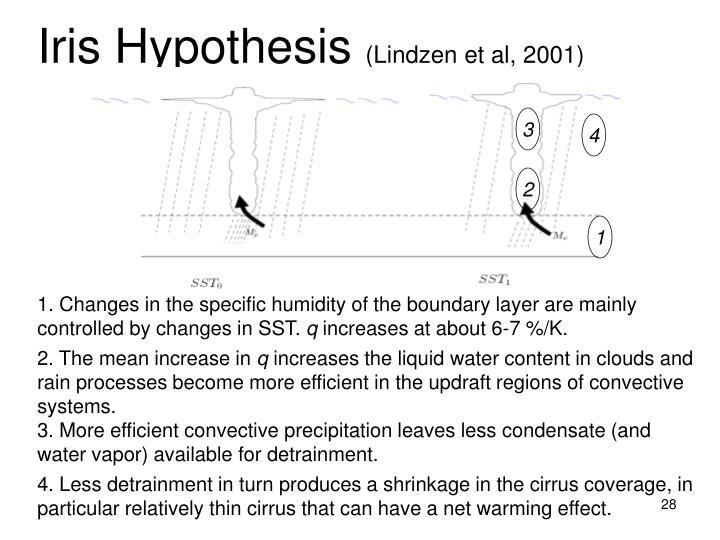 Iris Hypothesis