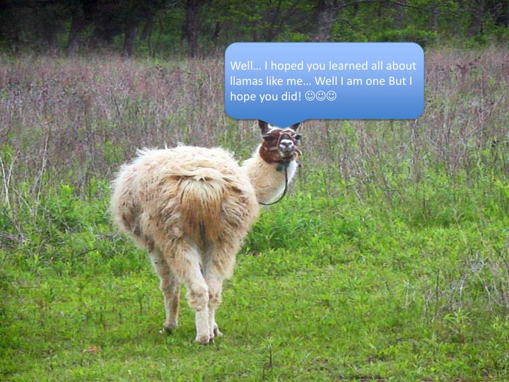 Well… I hoped you learned all about llamas like me… Well I am one But I hope you did!