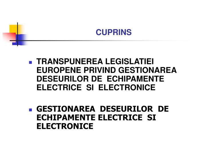 CUPRINS