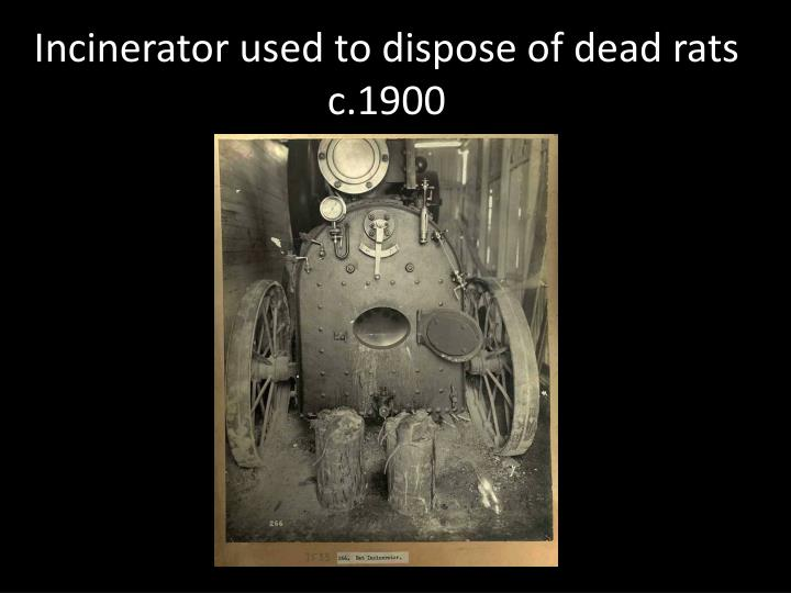 Incinerator used to dispose of dead rats c.1900