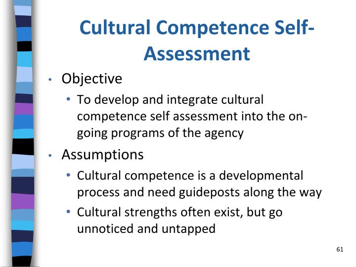 Cultural Competence Self-Assessment
