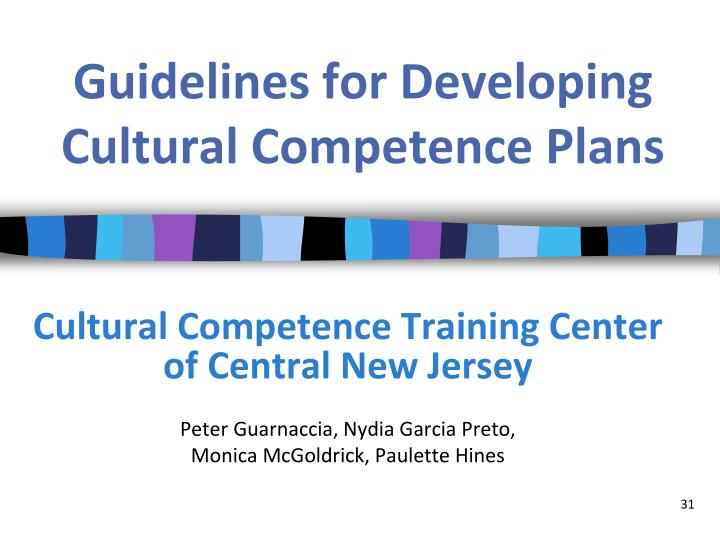 Guidelines for Developing Cultural Competence Plans