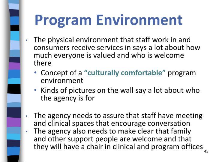 Program Environment