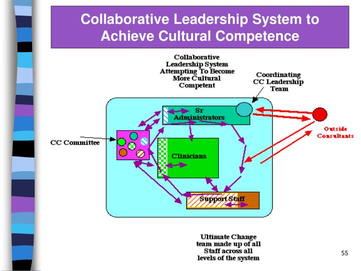 Collaborative Leadership System to Achieve Cultural Competence