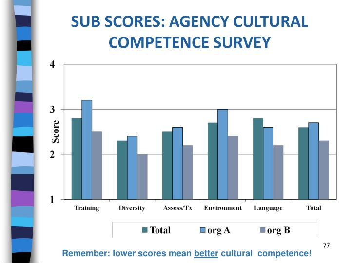 SUB SCORES: AGENCY CULTURAL