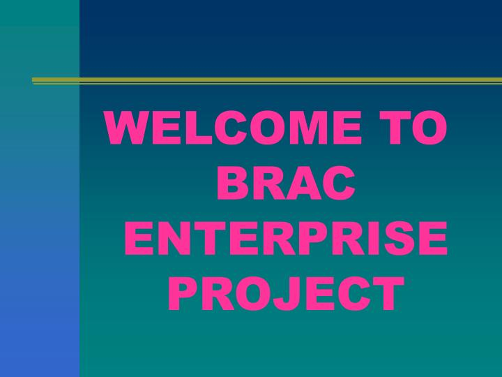 WELCOME TO BRAC ENTERPRISE PROJECT